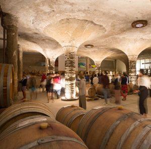 SailSterling Wine and Catamaran Club Tenuta di Castellaro Barricaia