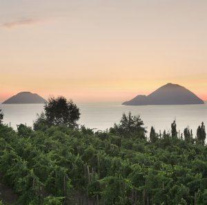 SailSterling Wine and Catamaran Club Panoramic Terrace